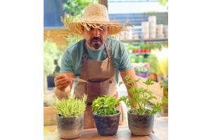 Πώς να διώξετε μακριά τα κουνούπια για να απολαύσετε τον κήπο ή το μπαλκόνι σας