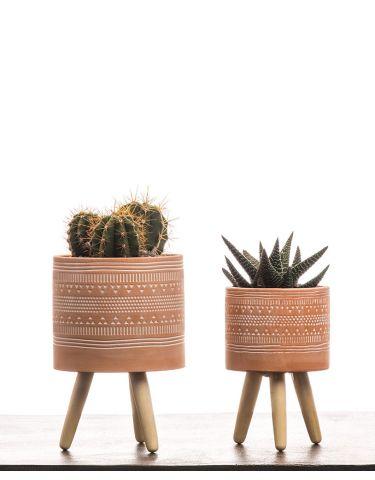 Succulent Tripod  Terracota